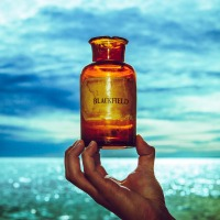 February 2017, Best Progressive Rock Album: Blackfield V