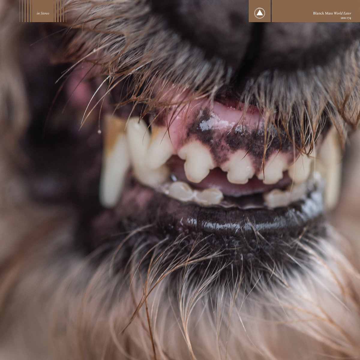 March 2017, Best Electronic Album: World Eater by BlanckMass