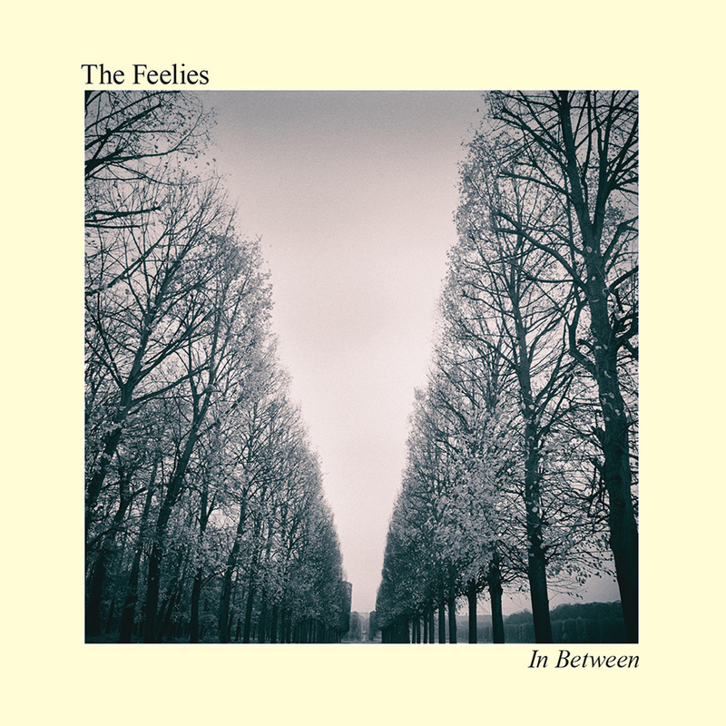 THE FEELIES - In Between - 800x800.jpg