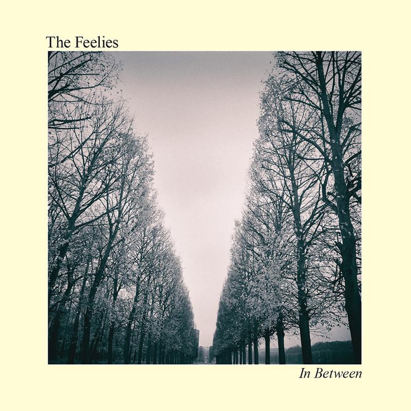 THE FEELIES - In Between - 800x800.jpg