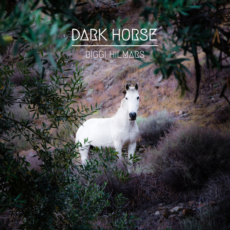 Best New Music: DARK HORSE by Biggi Hilmars