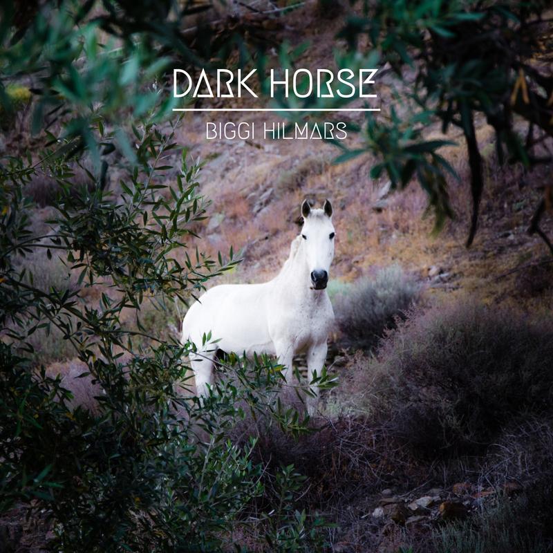 BIGGI HILMARS - Dark Horse - 800x800