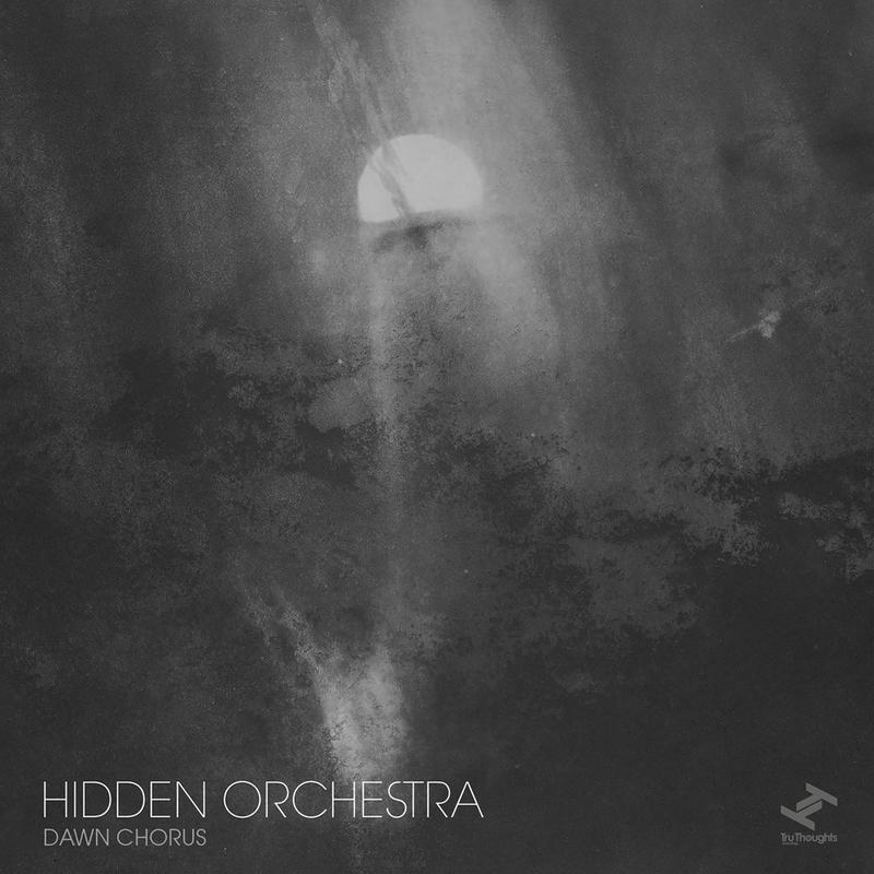 HIDDEN ORCHESTRA - Dawn Chorus - 800x800