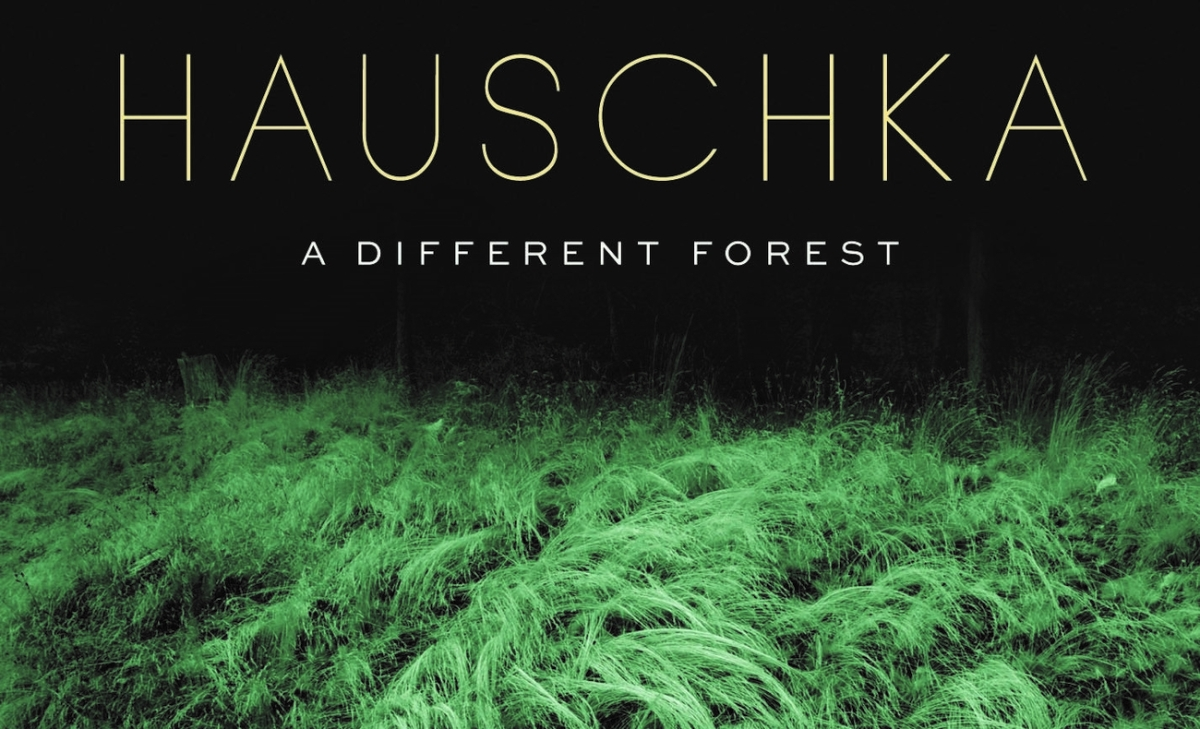 "Best New Music: ""A Different Forest"" by Hauschka"